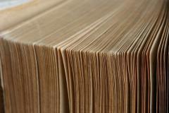 страницы книги, листы, книга.