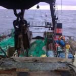 Судоходные, рыболовецкие компании Мурманска.