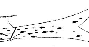 трал, схема